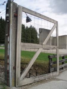 Dachau 7